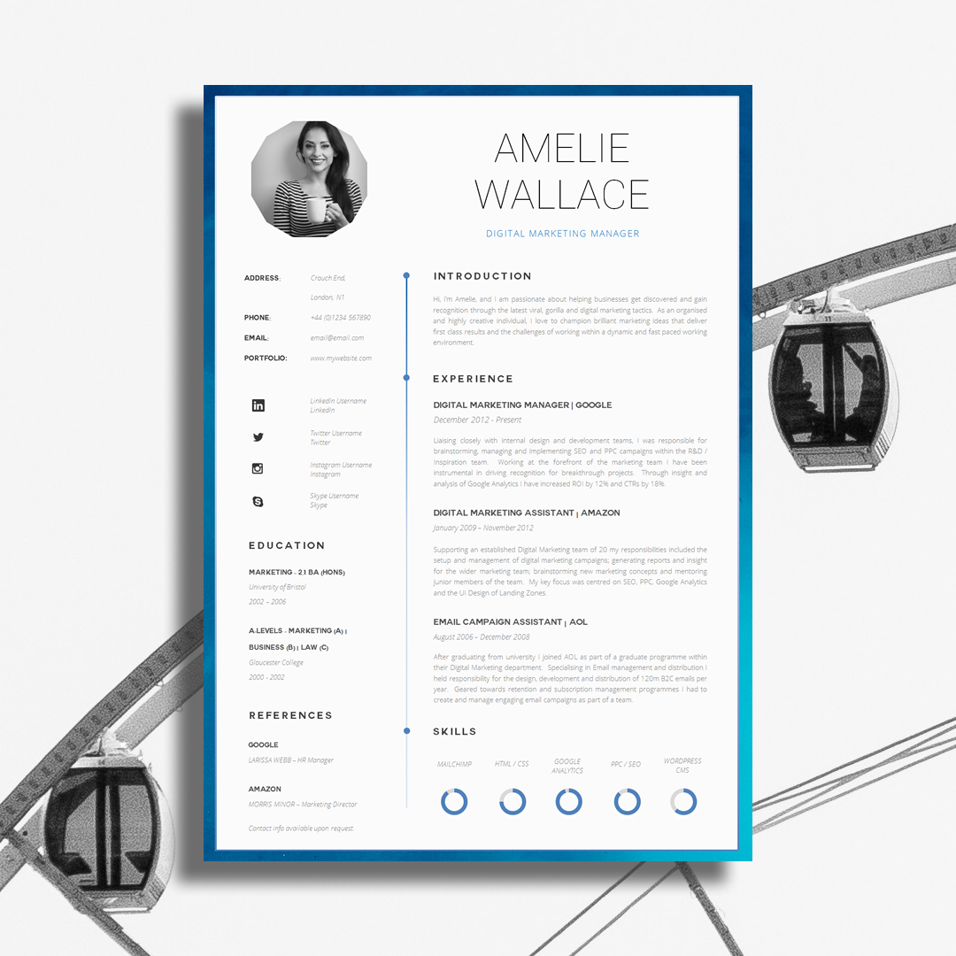 Creative CV Design  Example Cv
