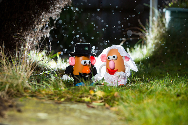 Potato Head Wedding