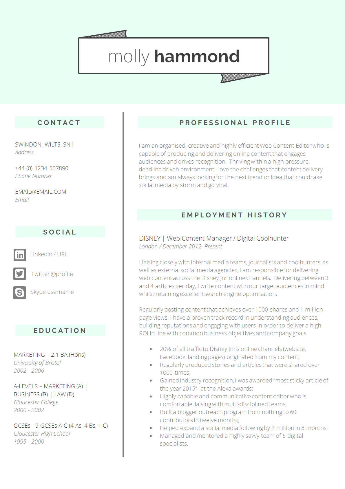 Perfect Cv Layout  MaggiLocustdesignCo