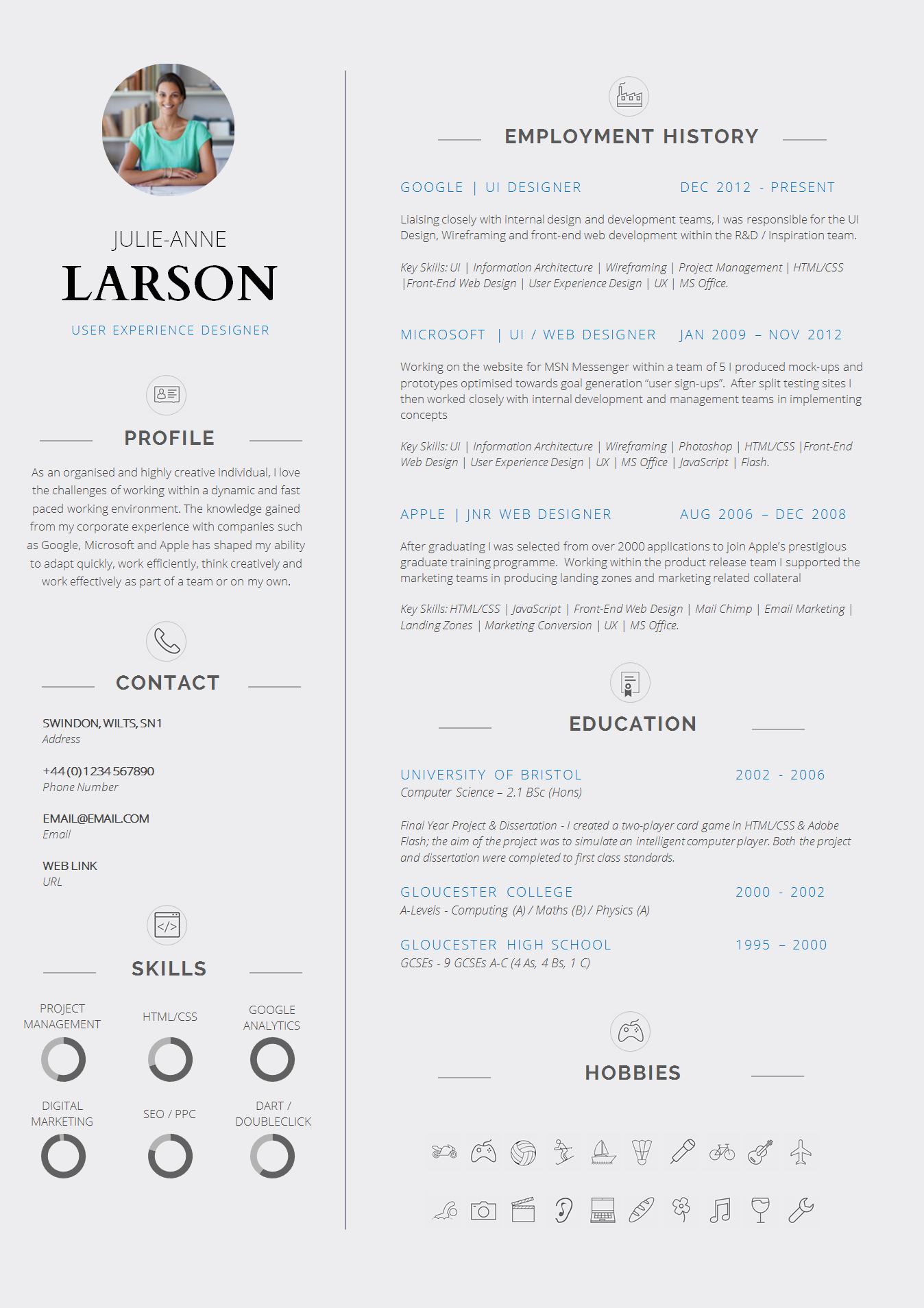 Professional CV Template  Resume Templates For Experienced Professionals