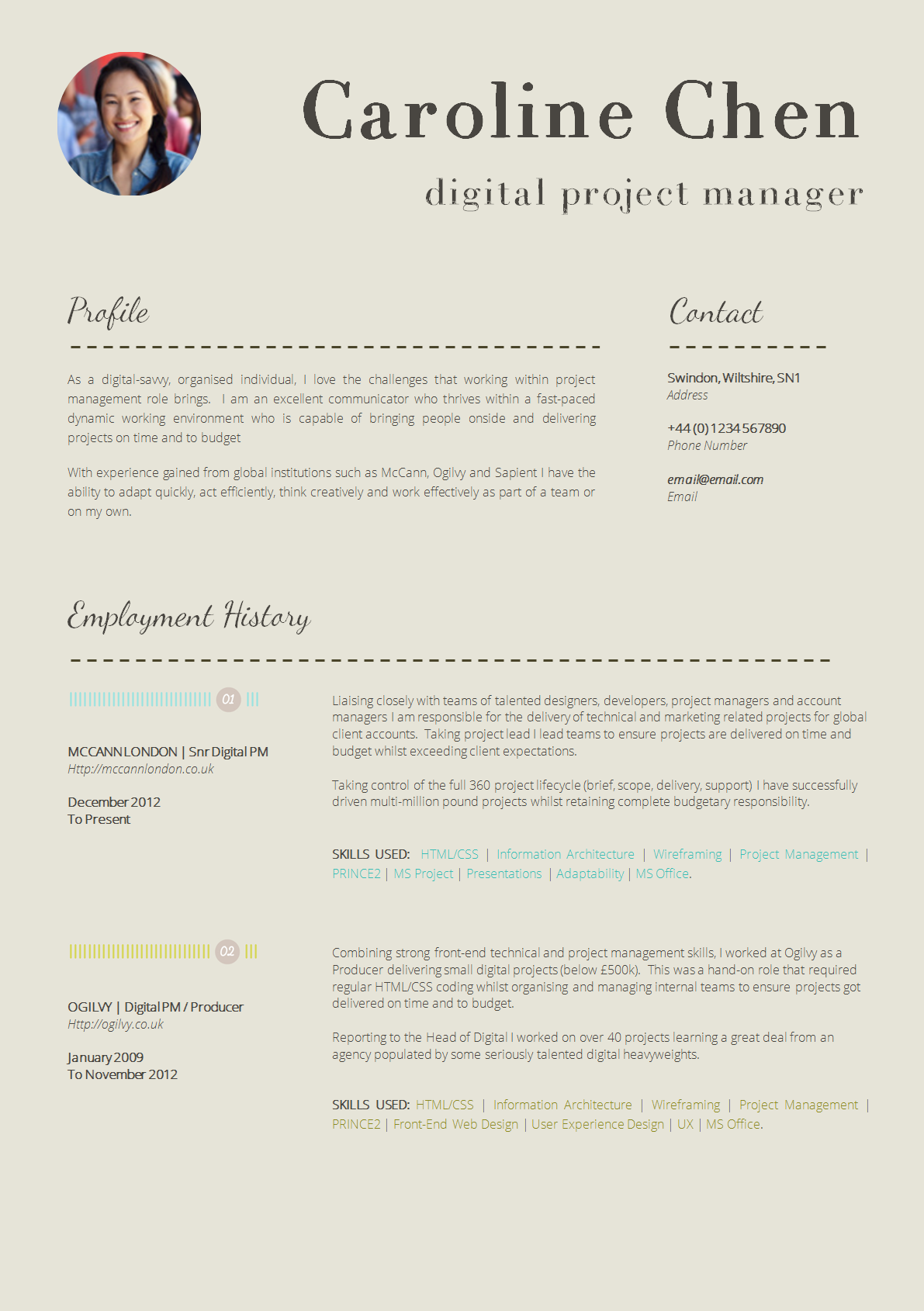 Professional It Cv Template  MaggiLocustdesignCo