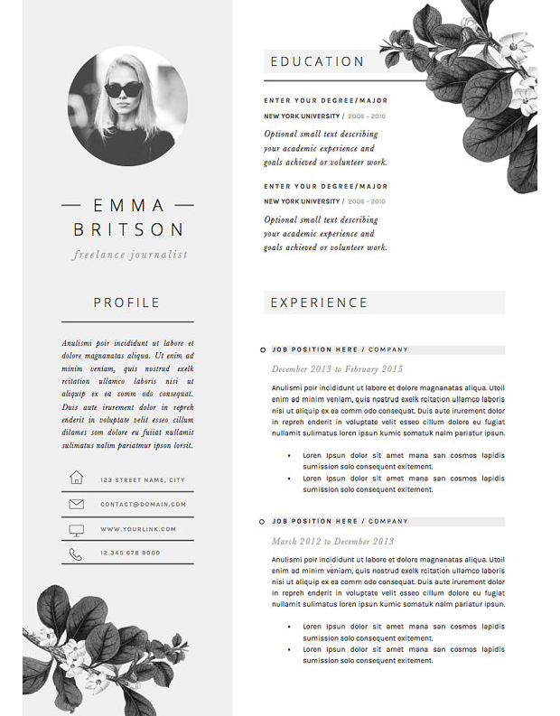 cv template - Professional Resume Template