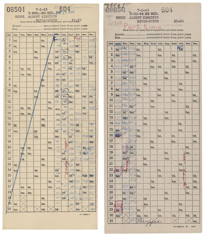 Albert Einstein Time Sheets Large