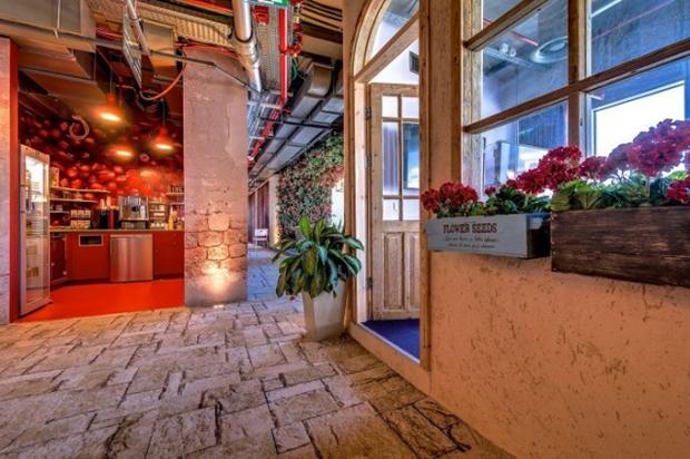 Google Tel Aviv Office Flower Pots