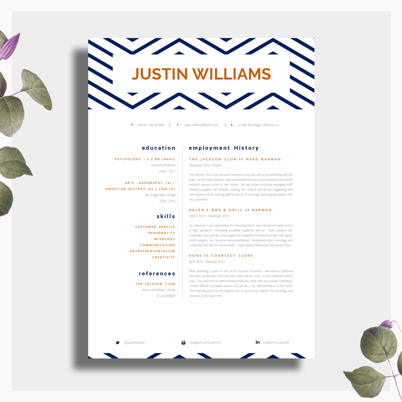 Single Page Professional CV