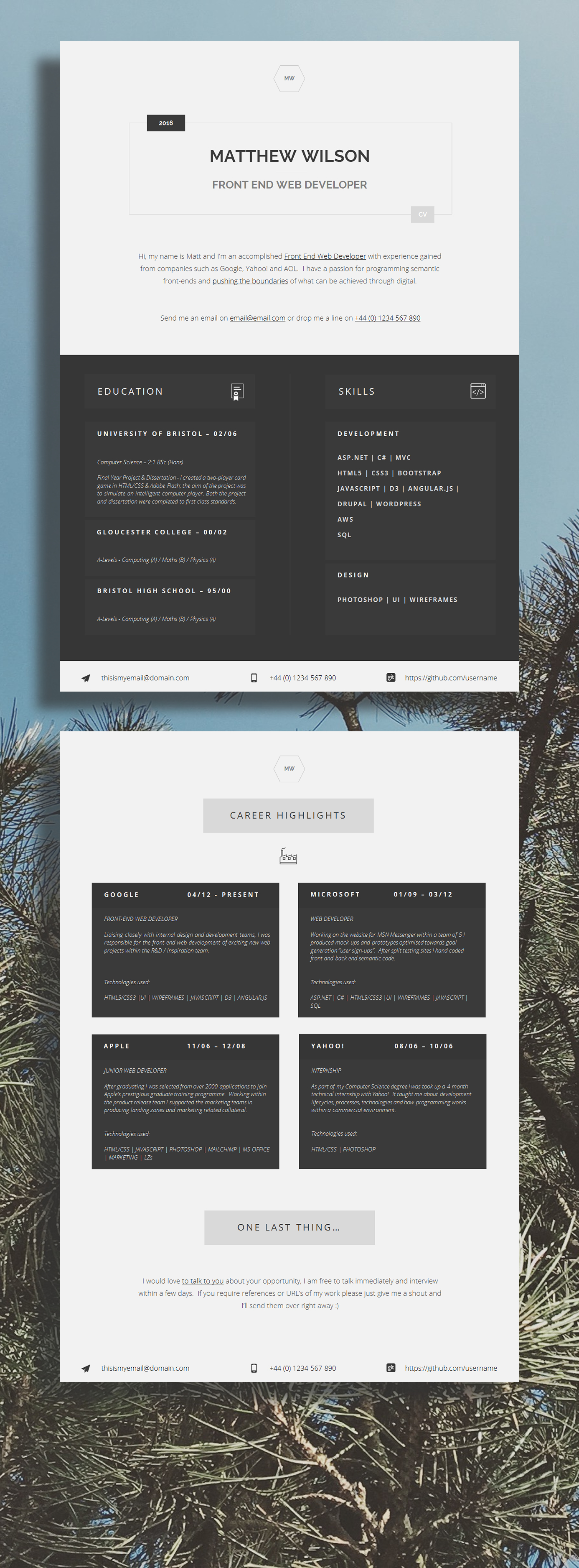 Web Developer CV Template 43 Modern Resume